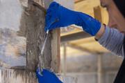 تصاویر آغاز مرمت تخت جمشید توسط مرمتگران بدون مرز