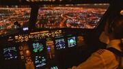 برکناری یک خلبان به دلیل وارد کردن یک زنبه کابین| تصویری که جنجالی شد