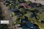 فرزندان کدام مقام دولتی در سقوط هواپیما اوکراینی جان باختند؟