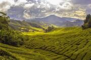 دیدنیترین شهرهای آسیایی برای سفر کدامها هستند؟