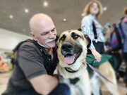 عجیب ترین روش برای مقابله با ترس از پرواز | بغل کردن سگ یا گربه راهی برای درمان فوبیا پرواز