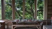 معرفی یک رستوران مجلل مبتنی بر غذاهای گیاهی | از سبک زندگی راستافریان چه میدانید؟