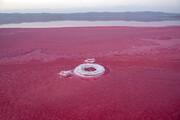 گردشگران؛ مسحور شگفت انگیزی دریاچه مهارلو