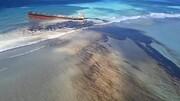 جمهوری موریس به دلیل نشت نفت در اقیانوس هند وضعیت اضطراری زیست محیطی اعلام کرد