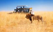 صنعت ۲۹ میلیارد دلاری سافاری در معرض تهدید | صنعت گردشگری حیات وحش آفریقا از کار افتاد